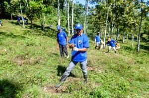 Empleados-de-la-Dirección-General-de-Minería-realizan-jornada-de-reforestación-en-el-Distrito-Minero-de-Monseñor-Nouel-1