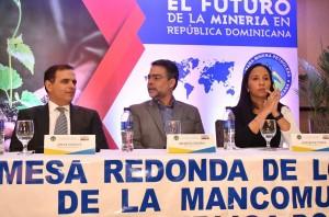 Panel-Importancia-de-la-minería-de-República-Dominicana-1