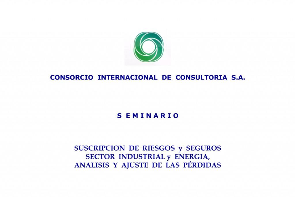 Seminario-Suscripción-de-Riesgos-y-Seguros--Sector-Industrial-y-Energía,-Análisis-y-Ajuste-de-las-Pérdidas